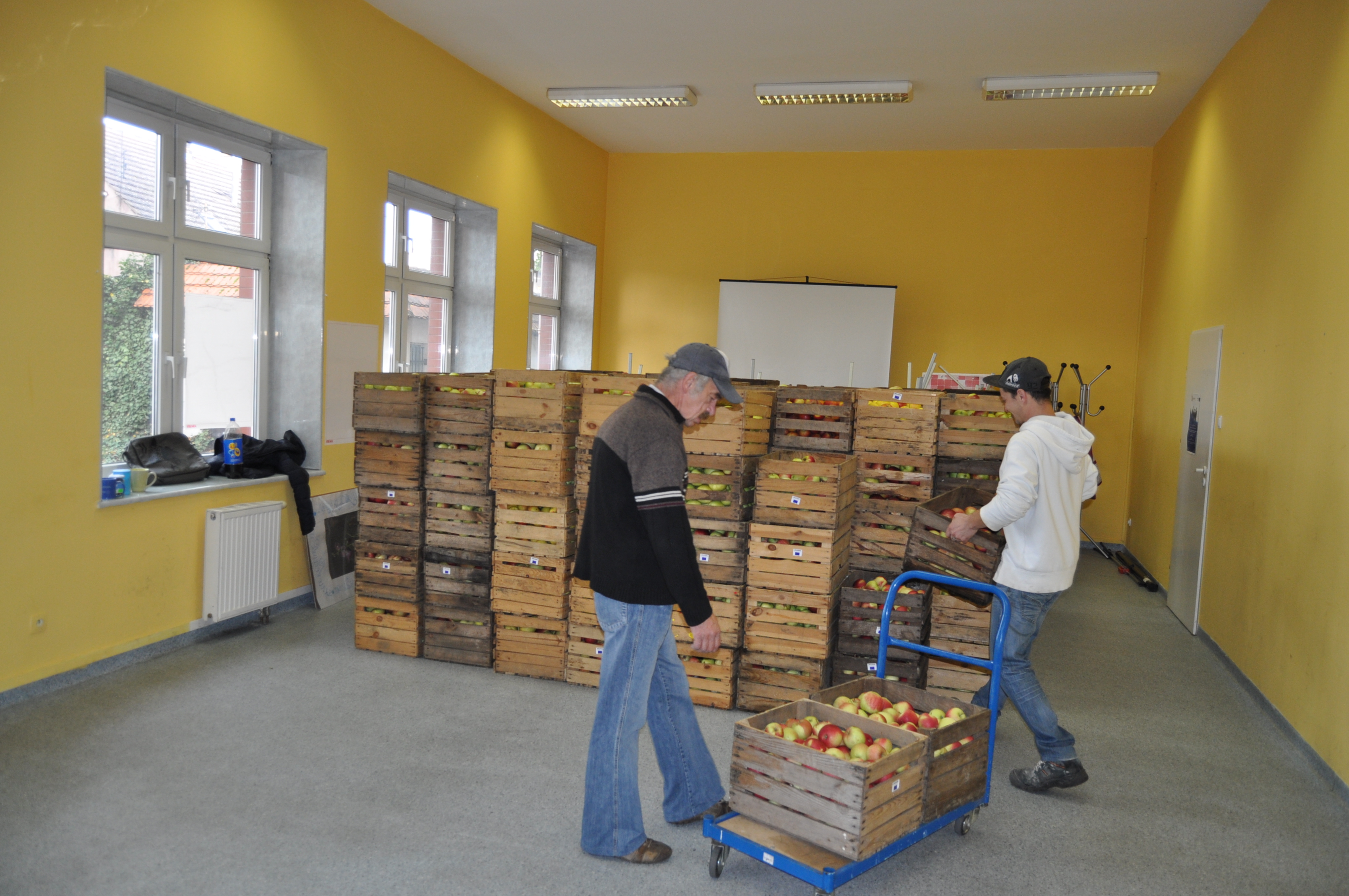 Ilustracja do informacji: Jabłka dla jednostek organizacyjnych pomocy społecznej i placówek oświatowych